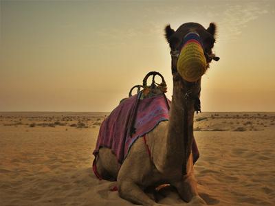 cabec-01-5-tours-packs-ofertas-vamos-a-dubai-emiratos-arabes-guia-turistico-cuerpo-03