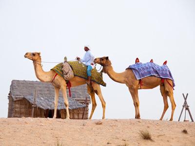 cabec-excursiones-05-desierto-safari-cena-vamos-a-dubai-emiratos-arabes-guia-turistico-cuerpo-01