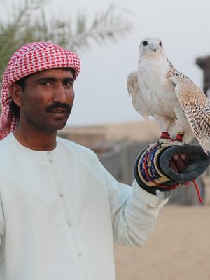 cabec-excursiones-05-desierto-safari-cena-vamos-a-dubai-emiratos-arabes-guia-turistico-cuerpo-02